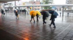 """""""雨""""です・・・。"""